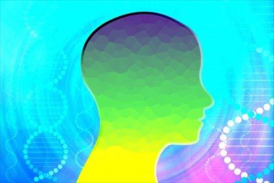 福岡の頭痛外来なら適切な診断を行うクリニックへ~頭痛の種類によって異なる症状と見分け方~